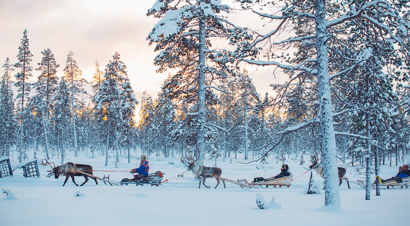 A reindeer safari is an ideal way to take in the wilderness while learning about local Sami culture.